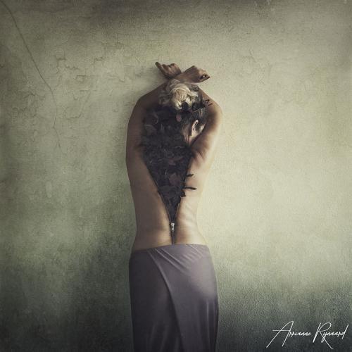 Arrianne Rijnaard - The nature in me